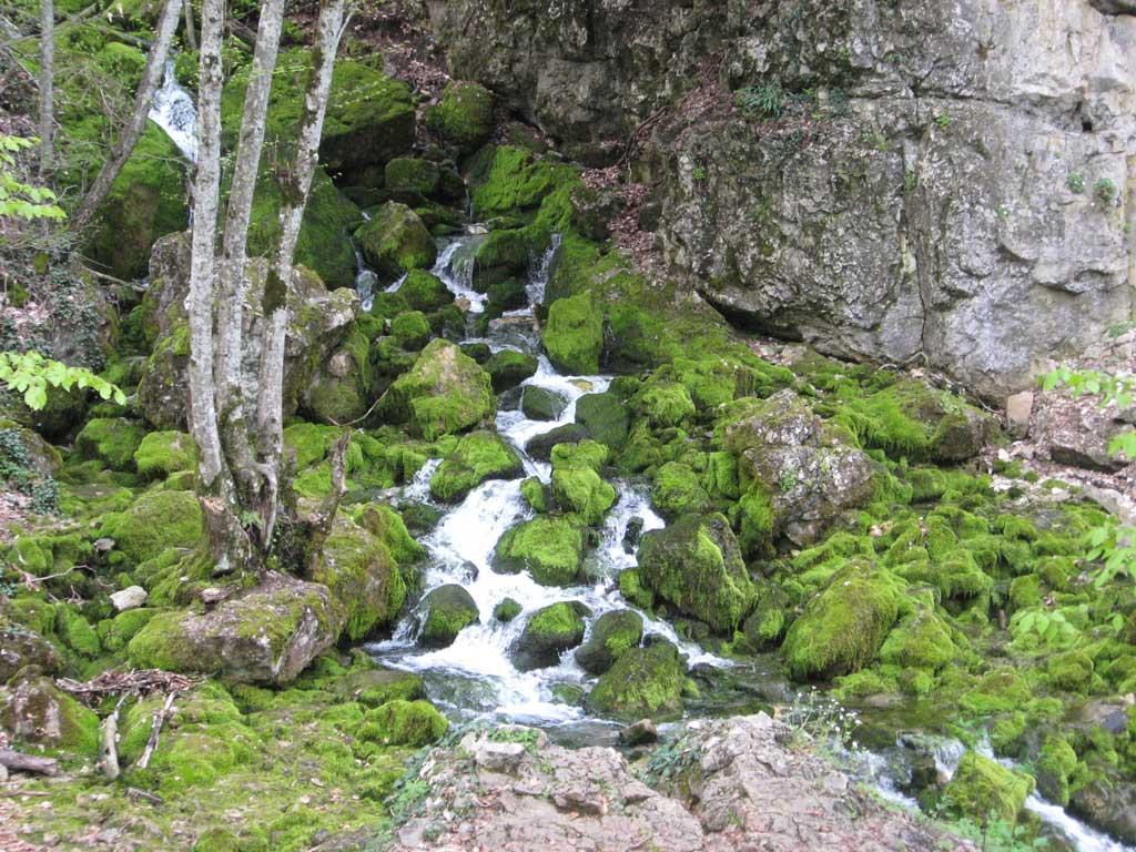 Альпийские мотивы в Большом каньоне