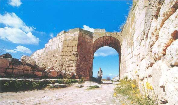 Средние ворота